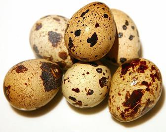 Яйце перепелине, 20 шт