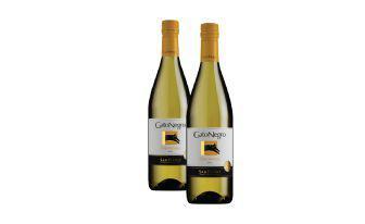 Вино Шардоне, біле сухе Гато Негро 0,75 л