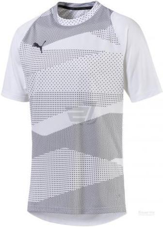 Футболка Puma ftblNXT Graphic Shirt Core 65578101 M сірий