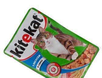 Корм для котів Kitekat з лососем в соусі, 100 г