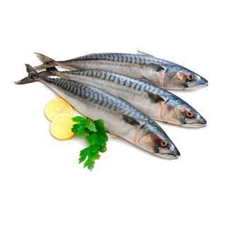 Рыба Скумбрия с/м